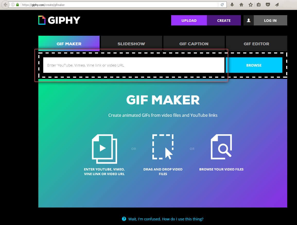 Giphy: Paste the link