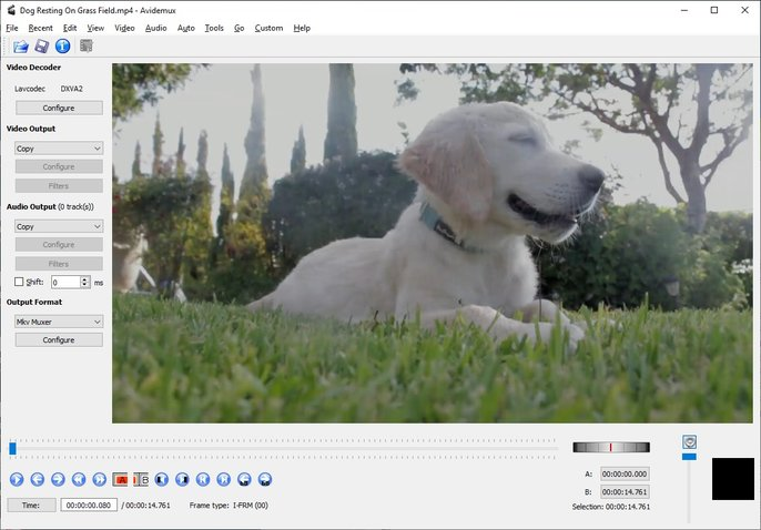 Avidemux easy to use video editor