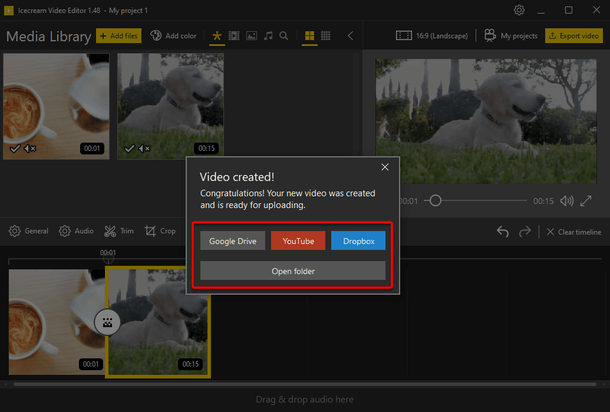 Video sharing options